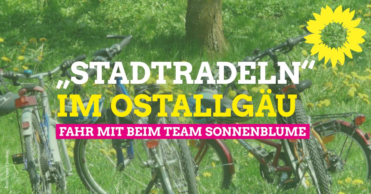 Stadtradeln dieses Jahr landkreisweit: Fahr mit im Team Sonnenblume!